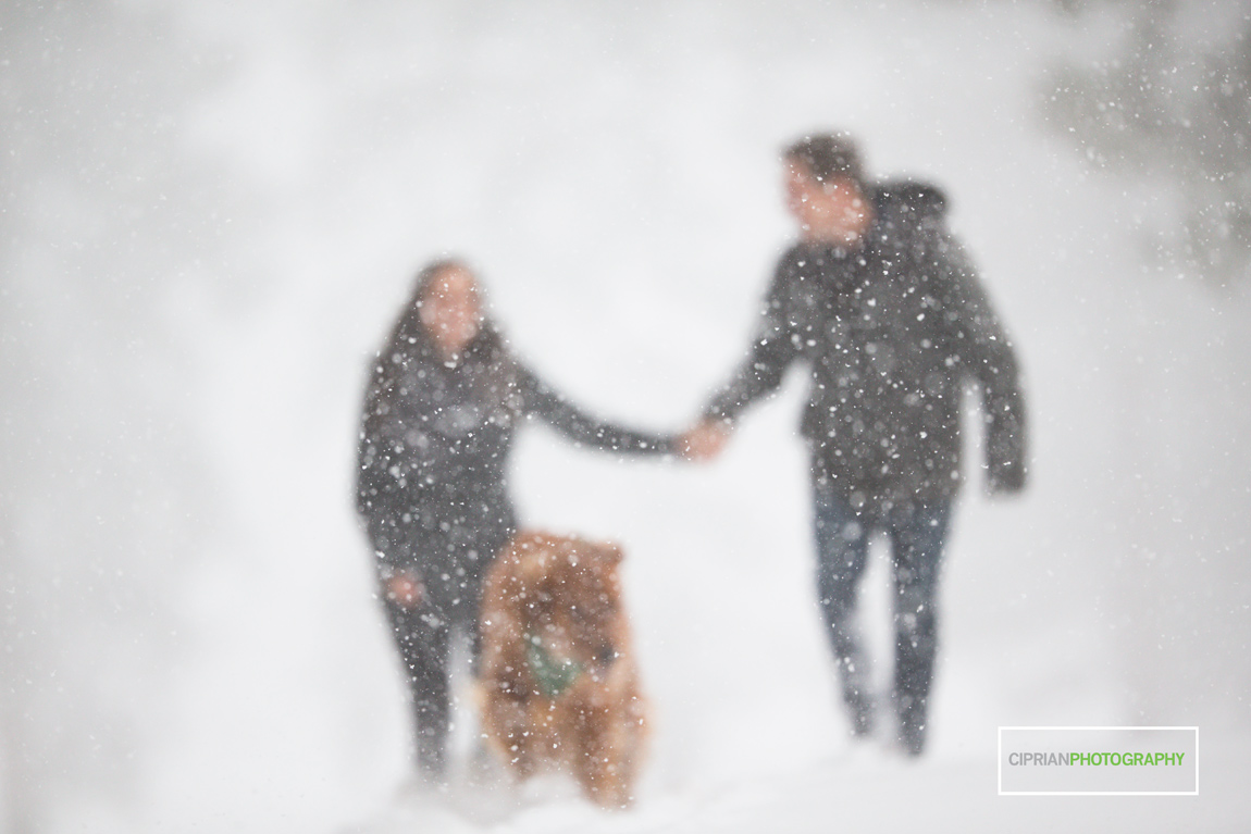 02-Engagement-in-snow-Tahoe